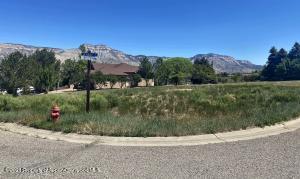 253 Lodgepole Circle, Parachute, CO 81635