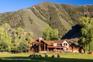 Admire Colorado wildlife in your backyard