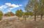 1132 S Cedar Springs Ranch Road, Rifle, CO 81650