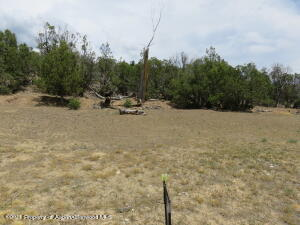 342 Faas Ranch Road, New Castle, CO 81647