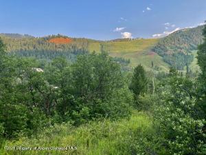 1472 Tiehack Road, Aspen, CO 81611