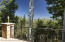 45 Ermine Lane, Snowmass Village, CO 81615