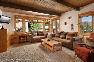 600 Carriage Way, J-3, Snowmass Village, CO 81615
