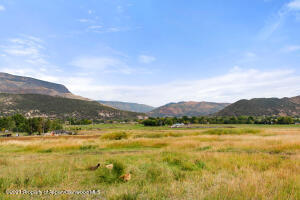 Approx 29 acres of Irrigated Pasture