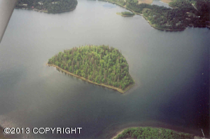 11 Lots Island Lake