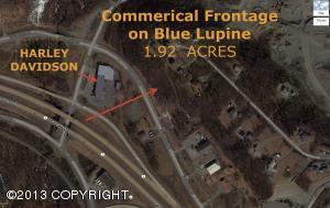 5675 E Blue Lupine Drive, Wasilla, AK 99654