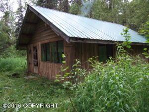 000 No Road, Alexander Creek, Remote, AK 99000