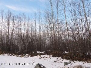 TR3 Park Drive, Chugiak, AK 99567
