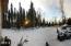 Panoramic Lot Photo
