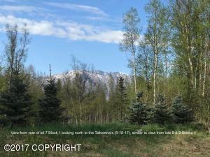 9115 E Alpine View Drive, Palmer, AK 99645