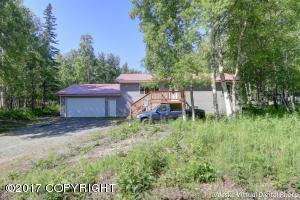 10130 N Buffalo Mine Road, Palmer, AK 99645