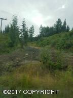 36052 N North Fork Road, Anchor Point, AK 99556