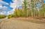 NHN Andrea Drive, Wasilla, AK 99623