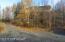 9091 E Tern Drive, Palmer, AK 99645