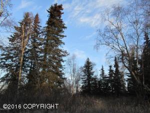 L3-9 Woodpecker Lane