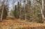 Baxter Bog Park Trail