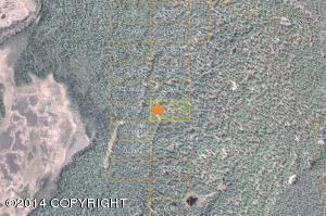 Tr H No Road, Clear Creek, Talkeetna, AK 99676