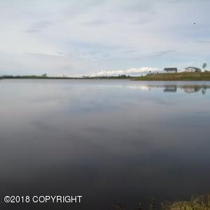 3872 S Pond Lily Lane, Big Lake, AK 99652