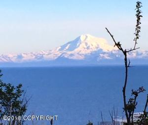 Redoubt Volcano and Cook Inlet!