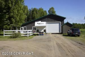 27021 W Mishap Avenue, Willow, AK 99688