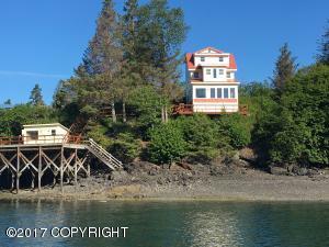 51703 SW Ismailof Island Rem, Homer, AK 99603