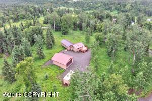 15664 Steelhead Ridge Road, Ninilchik, AK 99639