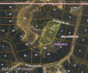 26040 W Michael Circle, Willow, AK 99688
