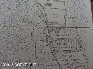 Tr 86 No Road, Trapper Lake, Willow, AK 99694