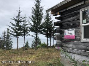 TC Jakolof Bay Road, Seldovia, AK 99663
