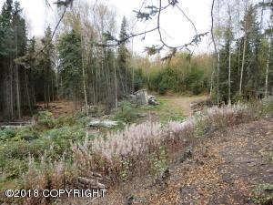 15580 W Alta Drive, Big Lake, AK 99652