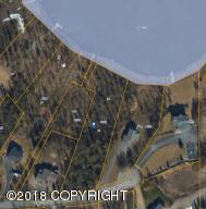 4101 E Birch View Drive, Wasilla, AK 99654