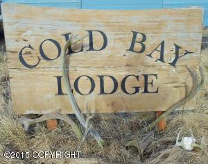 1000 Dias, Cold Bay, AK 99571