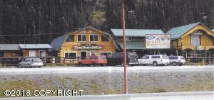 Mi 238 Parks Highway, Denali National Park, AK 99755