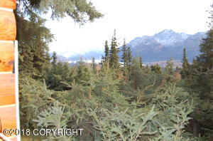 Beautiful Matanuska Glacier and Mountain Views! This is the view from the covered entry porch.