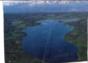 000 Caribou Lake, Homer, AK 99603