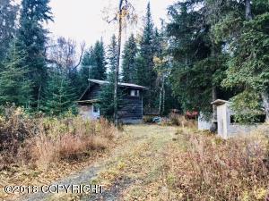 35075 Scandinavian Drive, Anchor Point, AK 99556
