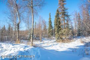 3401 N Snowgoose Road, Palmer, AK 99654
