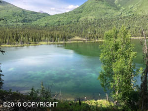 C001 No Road, Chickaloon, AK 99674