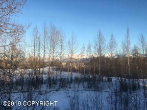 1869 E Tudor Road, Anchorage, AK 99518