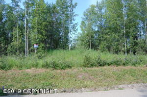 Nice wooded lot that is several feet above road level and then level.