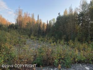 5698 S Kenaka Bena Loop, Big Lake, AK 99652