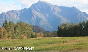 Pioneer Peak View
