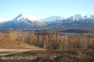 King Mountain and entry road to one of several home sites on this 40 acre parcel. All would have outstanding views.