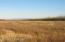 Barley Way