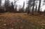 Tr A No Road, Skwentna, Remote, AK 99000