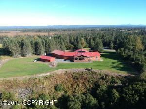 32645 Shorebird Lane, Anchor Point, AK 99556