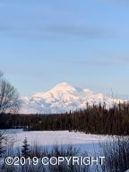 22056 S Towns Place, Trapper Creek, AK 99683