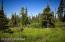 C16 Alaskan Wildwood Ranch(r) (12)