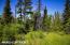 C16 Alaskan Wildwood Ranch(r) (19)