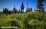 C16 Alaskan Wildwood Ranch(r) (27)